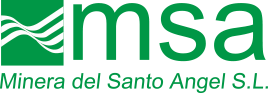 logo-msa-x